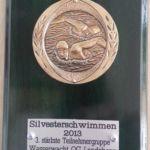 Silversterschwimmen